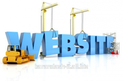 Creation of the unique website