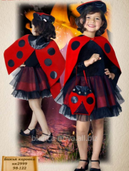 "Hire of a carnival costume ""A ladybug -"