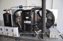 Repair of the refrigerating compressors Frascold,