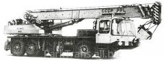 Rent of the truck crane in Stavishche