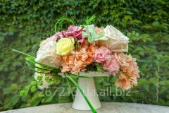 Unique floristics