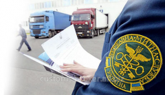 Services of the customs representative,