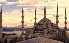 Air transportation cargo international to Turkey