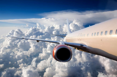 General freight air transportation