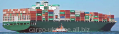 International transport in sea containers