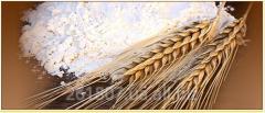 Guzoperevozk grain-carriers