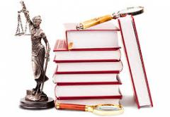 Legal mediation for legal entities and individuals