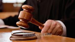 Representation in bodies of judicial authority