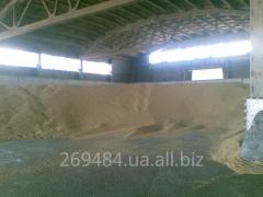 Услуги по экспорту пшеницы