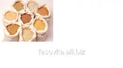 Fasovany grain