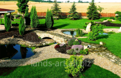 Improvement of garden, planting of trees and