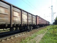 Freight car hire