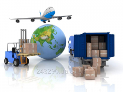 Declaration of goods at customs