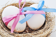 """Egg donation """"Double"""" package"""