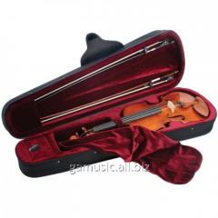 Rent, hire of case for violin in Kiev