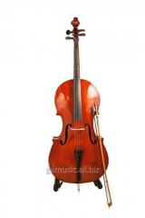 Rent, hire of violoncello in Kiev