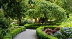Improvement and gardening of territories