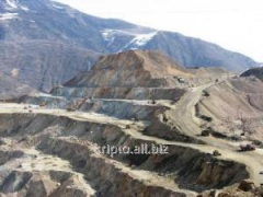 Processing of tailings dams and dumps