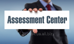 Organizational and personnel audit - an assessment