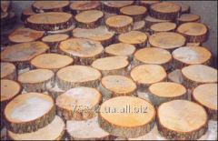 Tree saw c