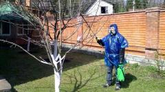 Spraying of a garden.