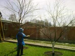 Care of a garden