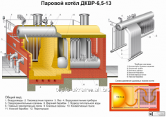 Boiler DKVR; TP; Chamber of Commerce and Industry;