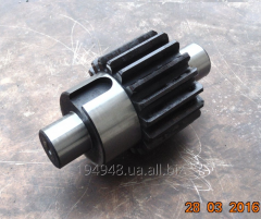 Production a gear wheel shaft with a straight
