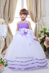 Hire of a children's ball Klematis dress