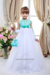 Hire of a children's ball dress