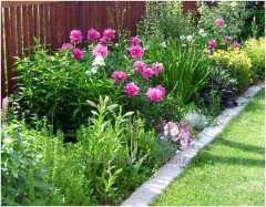 Услуга подбора растений для сада