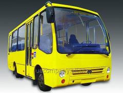Service of buses Bogdan
