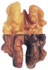 Осветление ядра грецкого ореха.
