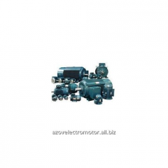 Repair of synchronous electric motors with any