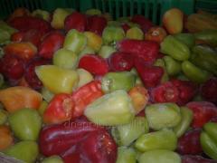 Перевозка замороженной овощной продукции из Чехии