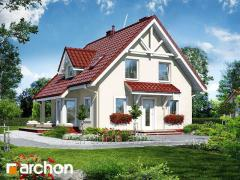 Projects of houses on a narrow site the House in a