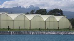 Unique farmer greenhouse Israeli productions