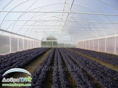 Production of greenhouses, film tunnels under the