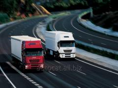 Internationale Fracht LKW
