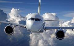 Aviation transportation of goods