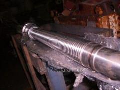Restoration and repair of screw couples