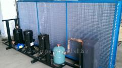 Service of a chiller