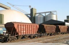Branch line of an elevator in Khmelnytskyi and the