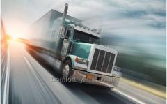 Service international cargo transportation