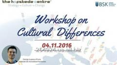 Workshop on Cultural Differences