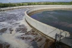 Очистка сточных вод мясной и рыбной промышленности