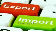 Consulting and the organization of import- export