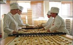 Трудоустройство в Чехии Упаковщицы на кондитерскую фабрику