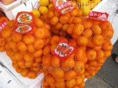 Трудоустройство в Италию Расфасовка мандарин, апельсин, оливок