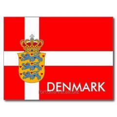 Иммиграция в Данию. Получение ВНЖ, ПМЖ